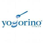 yogotino